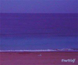 20060929075600-marina.jpg