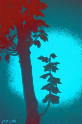20081117172329-arbolsuenos.jpg