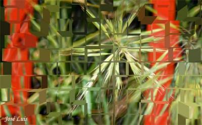 20081101205101-discontinua-ruptura.jpg